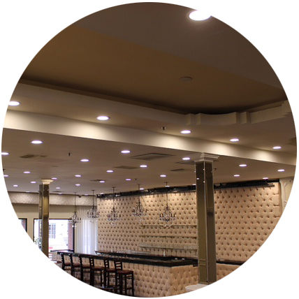 Fany led downlights applistion
