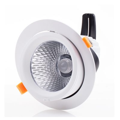 Snow series Gimbal LED Downlights
