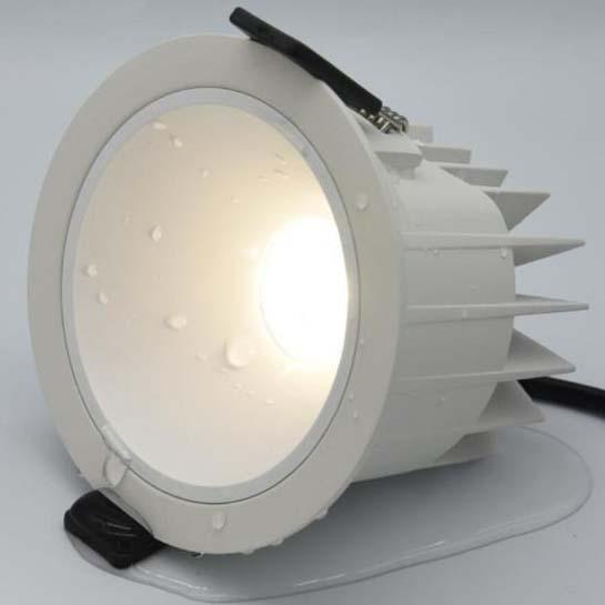 Waterproof LED Downlight